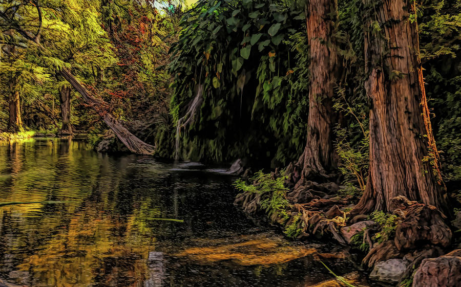 Krause Springs Painted Photograph