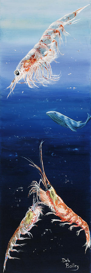 Baleen Whale Painting - Krill by Debra Bailey