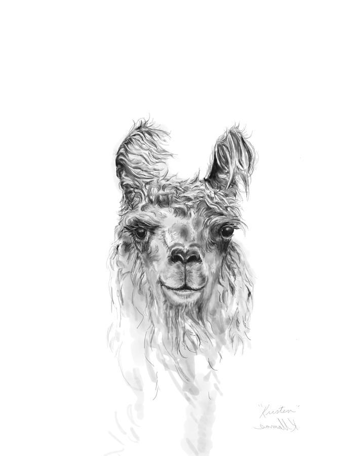Llamas Drawing - Kristen by K Llamas