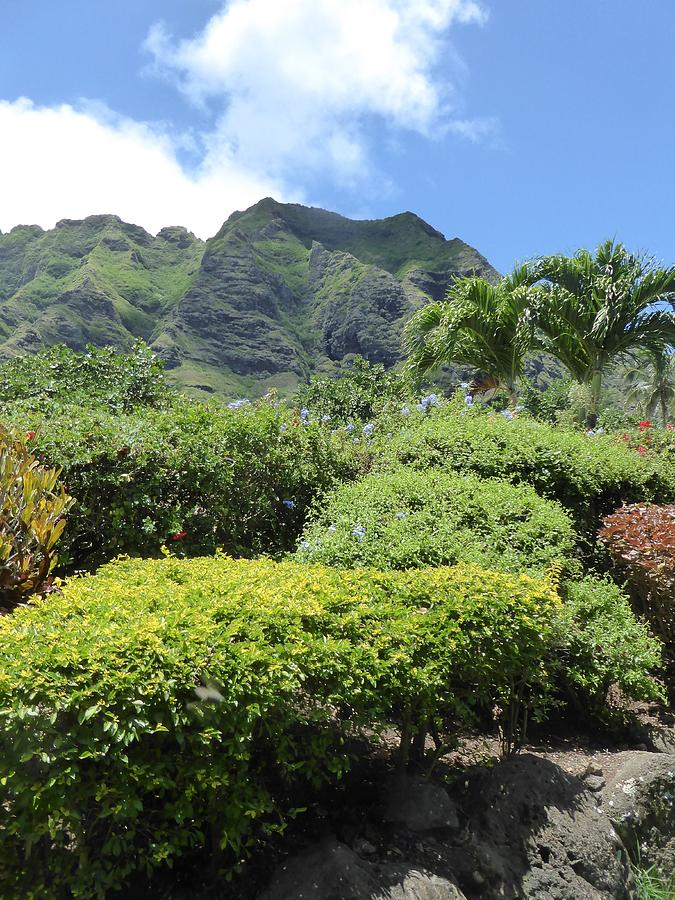 Hawaii Photograph - Kualoa Beauty by David Givens
