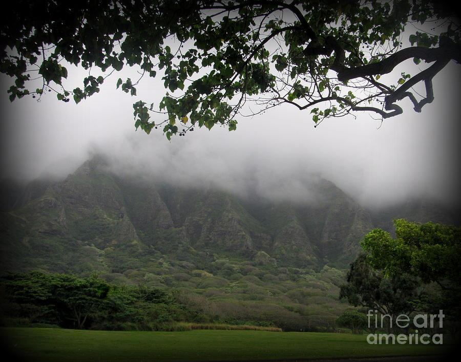 Oahu Photograph - Kualoa Park on Oahu by Joy Patzner