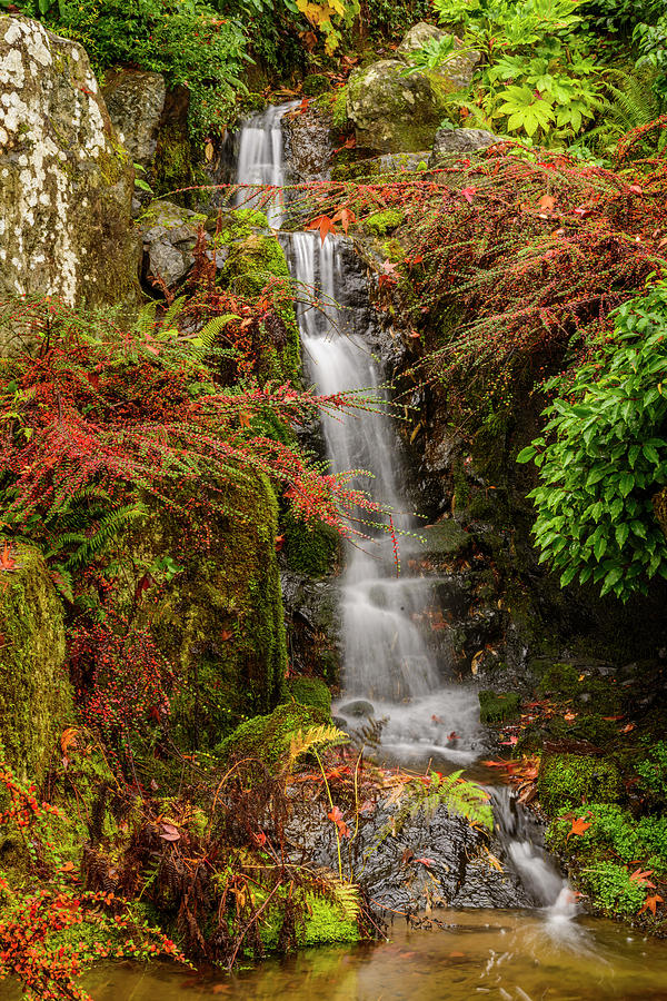 waterfall digital art kubota garden seattle by michael lee - Kubota Garden