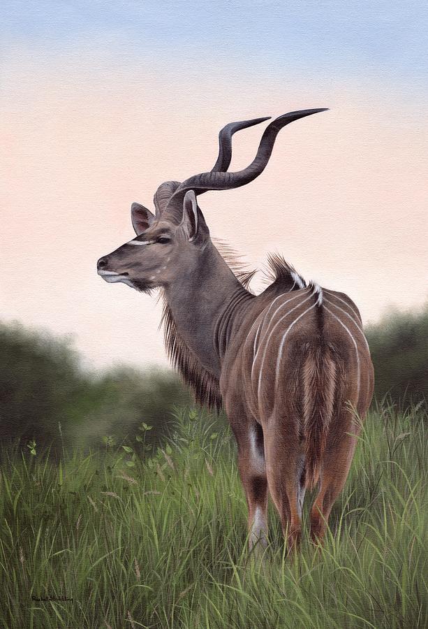 Kudu by Rachel Stribbling