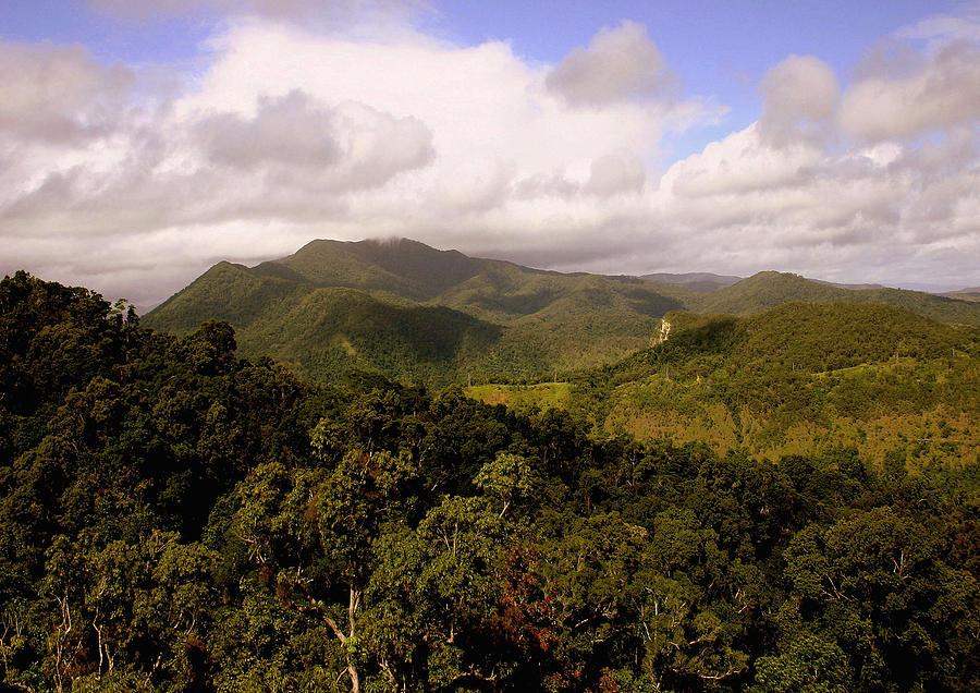 Hills Photograph - Kuranda Queensland by Tony Brown