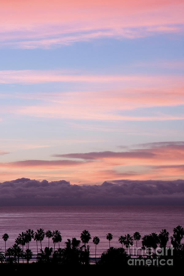 Nature Photograph - La Jolla Shores In California by Julia Hiebaum