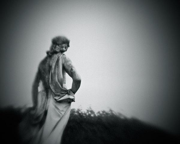 Europe Photograph - La Luce Oltre La Siepe by Luca Lacche
