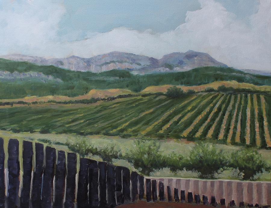 La Rioja Valley by Dennis Sullivan