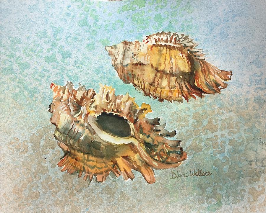 Shell Painting - Lace Murex by Diane Wallace