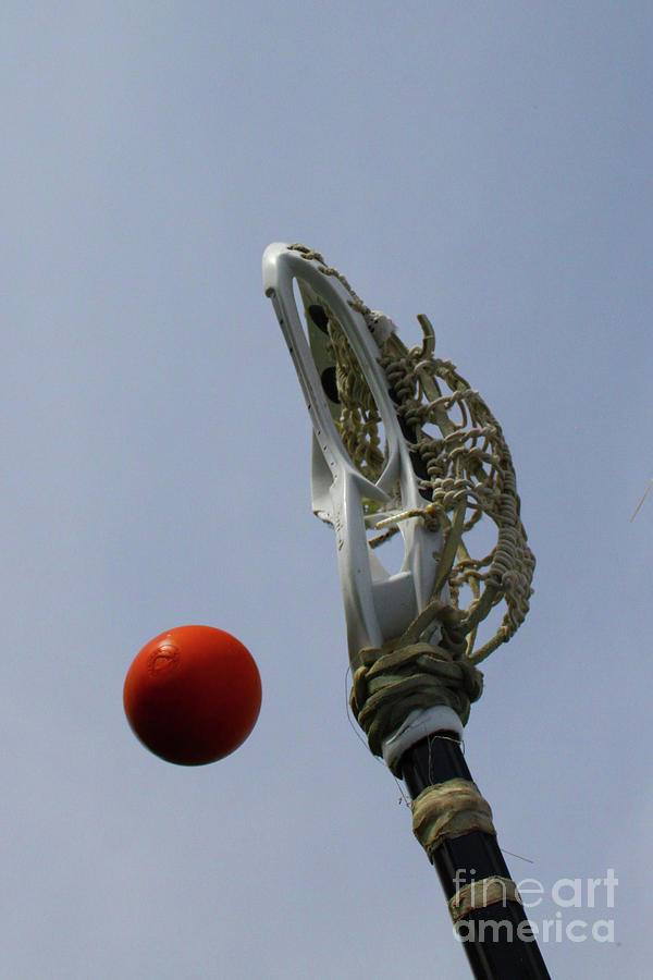 Lacrosse Stick and Ball by Kristy Jeppson