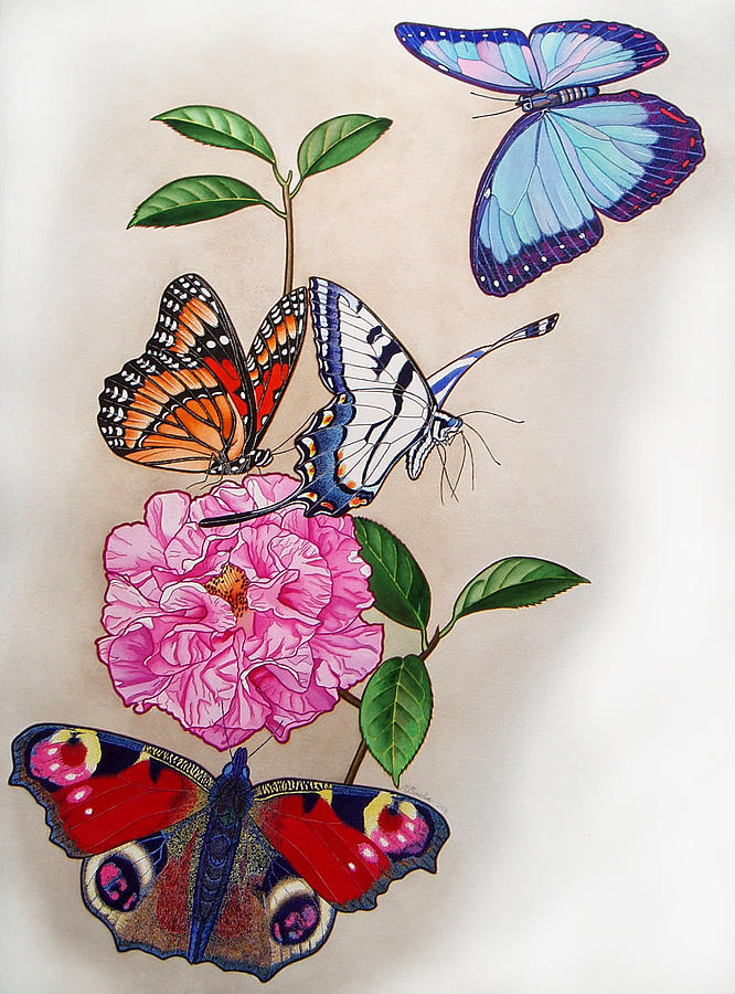 Butterflies Painting - Ladies Of The Camellia by Vlasta Smola