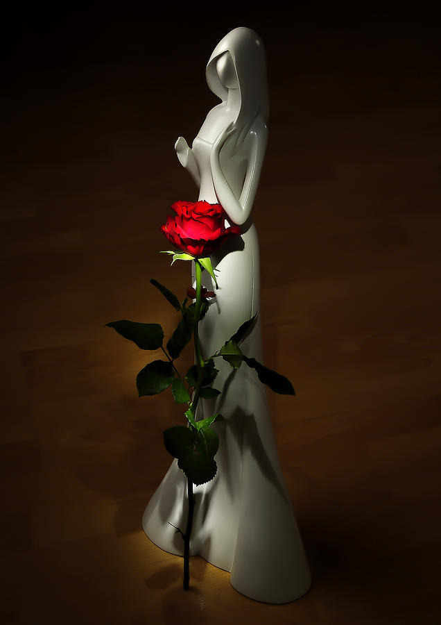 Floral Photograph - Lady And Rose by Svetlana Sewell