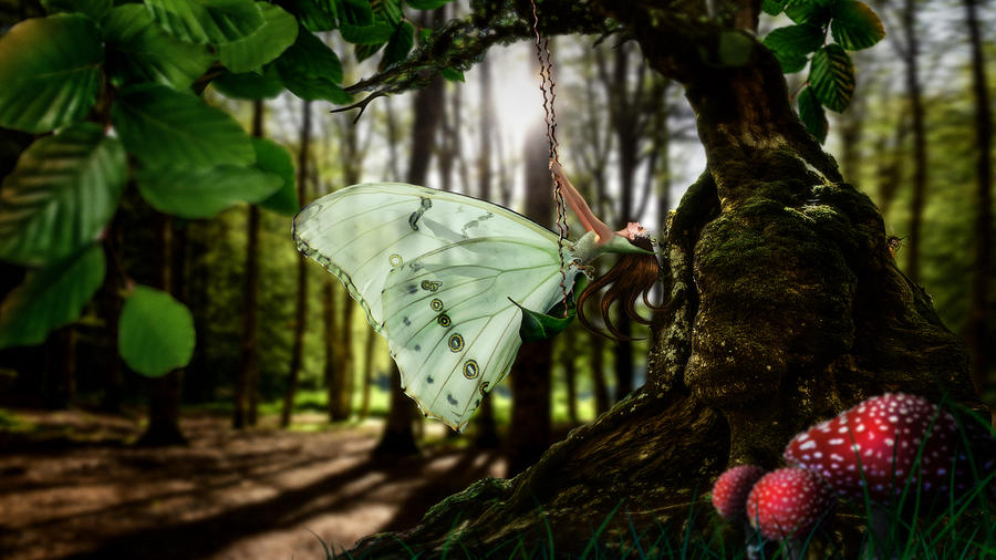 Lady Butterfly by Alessandro Della Pietra