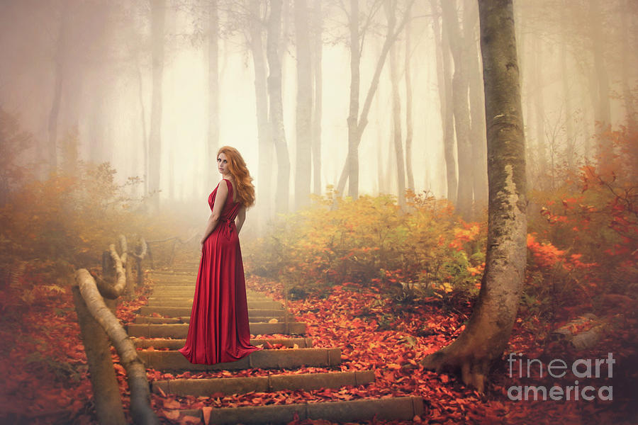 Lady Of The Golden Forest Photograph