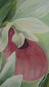 Floral Painting - Lady Slipper by Eileen Kasprick