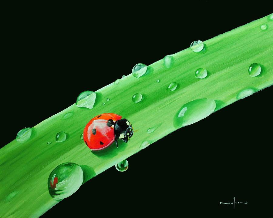 Oil Painting - Ladybug on Leaf by Nolan Clark