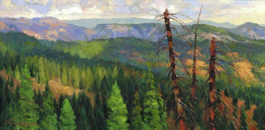 Wilderness Painting - Ladycamp by Steve Henderson