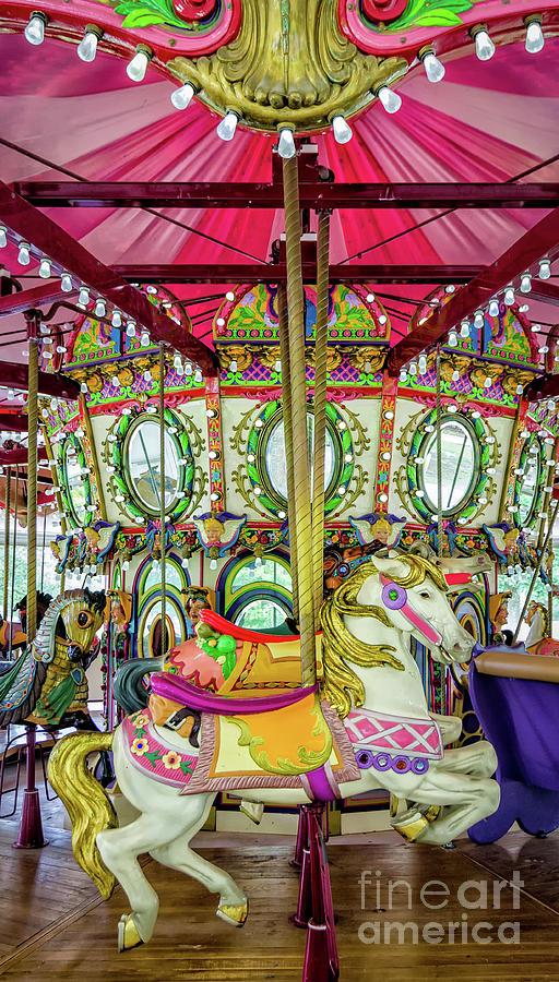 Lafreniere Carousel - Nola Photograph