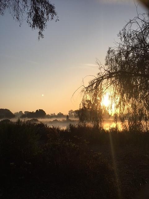 Lagoon Blanketed by Fog by Paula Hunter