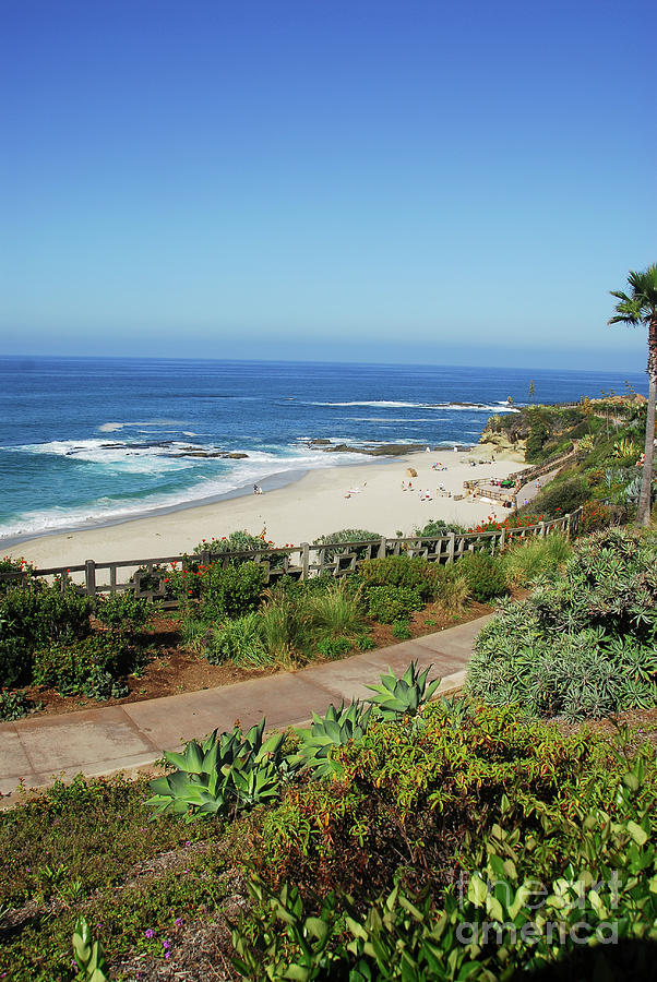 Coastline Photograph - Laguna Afternoon by Timothy OLeary