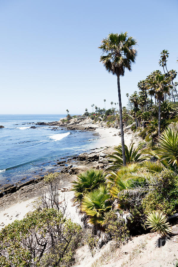America Photograph - Laguna Beach California Heisler Park by Paul Velgos