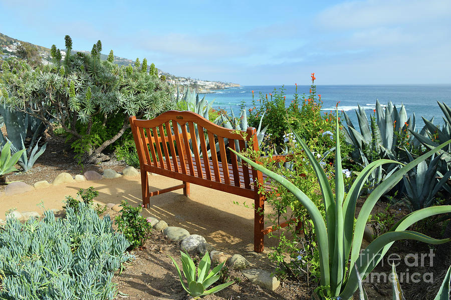 Laguna Beach Ocean View by Hao Aiken
