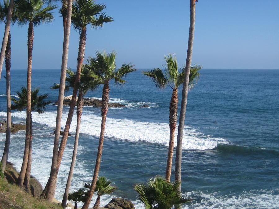 Laguna Beach Photograph - Laguna Beautiful by Renee Antos