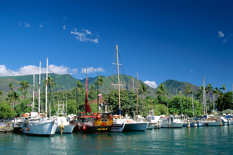 Afternoon Photograph - Lahaina Harbor - Maui by William Waterfall - Printscapes