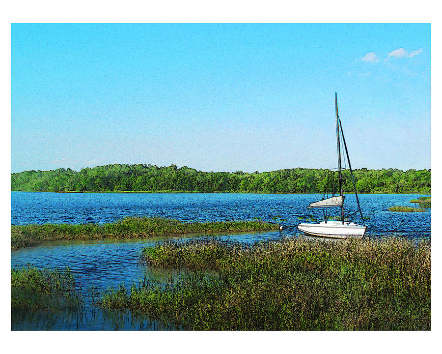 Landscape Photograph - Lake At Hamony Fl by Deborah Hildinger