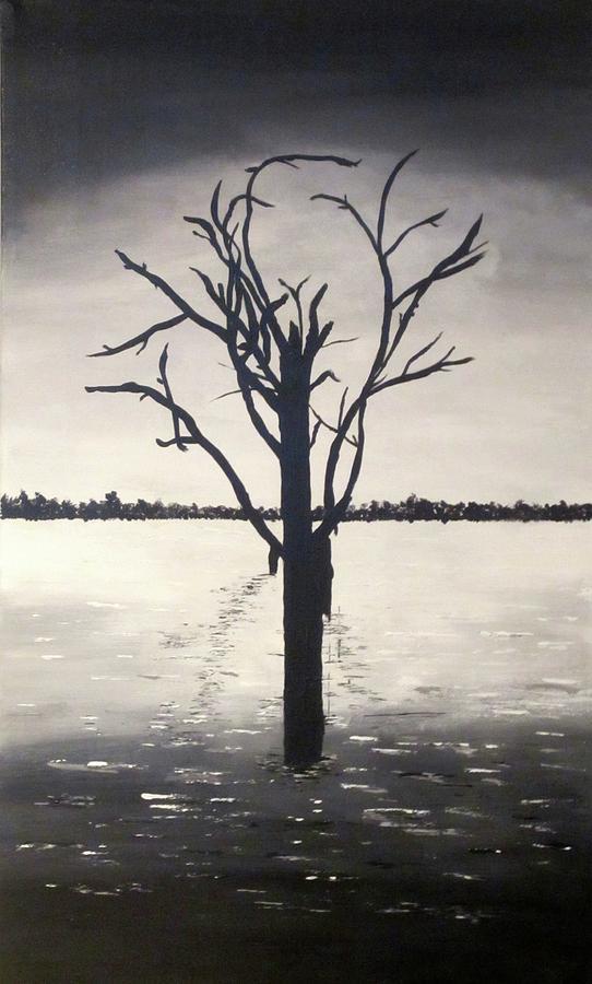 Original Painting - lake Bonney by Kim Switzer