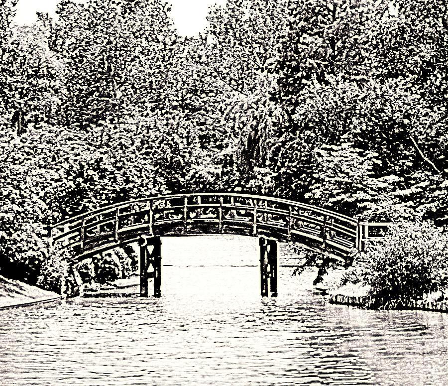 Bridge Photograph - Lake Bridge by Rodger Mansfield