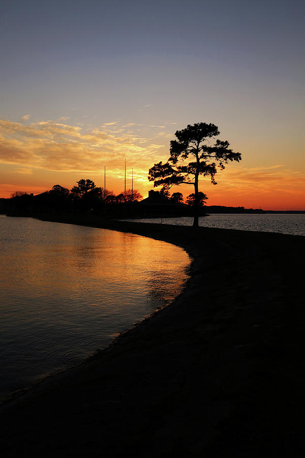 Lake Conroe Sunset Vertical Photograph