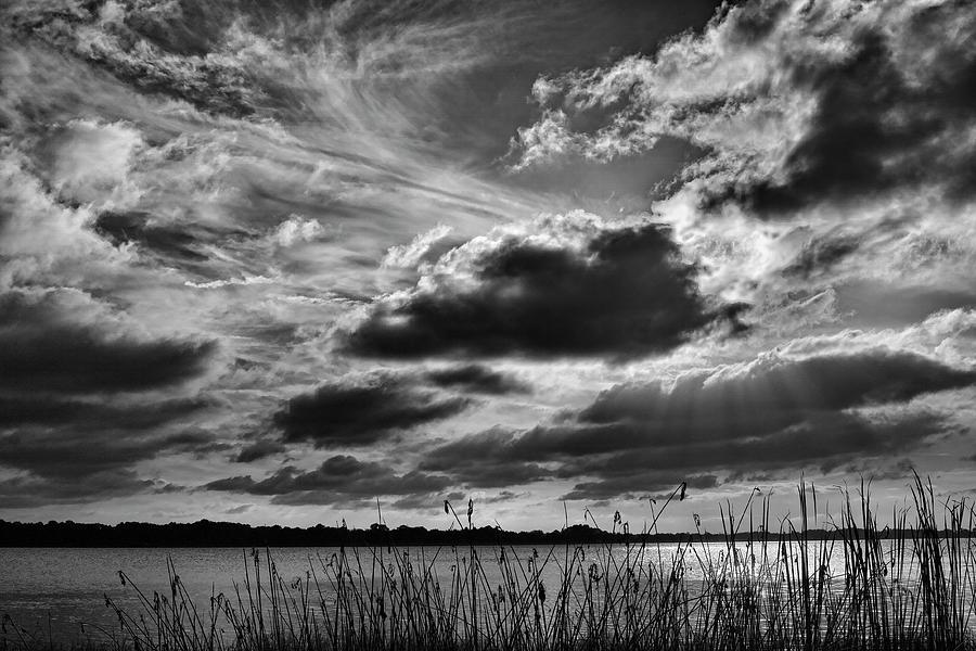 Lake Photograph - Lake Dora Black And White by Roberto Aloi