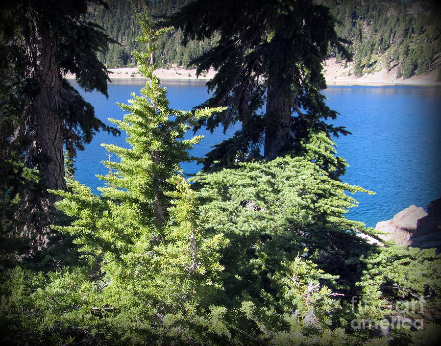 Lake Photograph - Lake Helen at Lassen Volcanic National Park by Joy Patzner