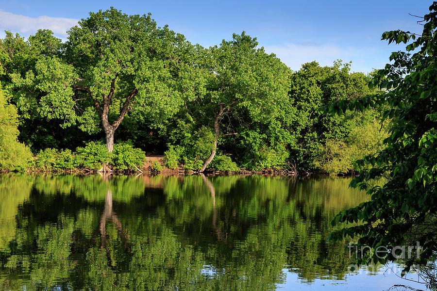 Lake Henfer Shoreline Photograph