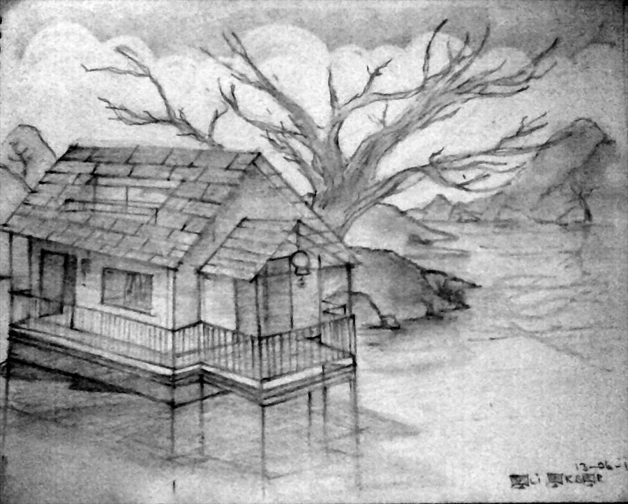 Lake House Of The Dream Drawing By Ali Akbar