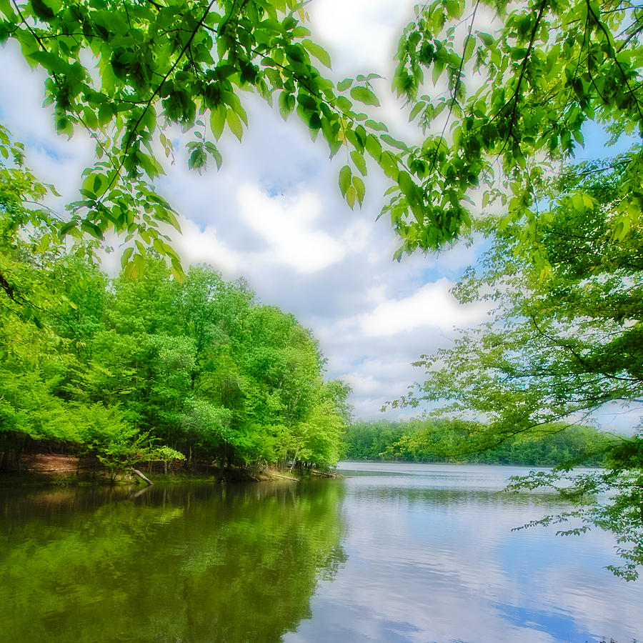 Spring Photograph - Lake In Spring by Wesley Phillips