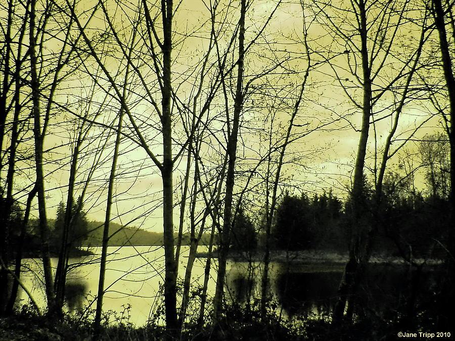 Impressionist Landscape Photograph - Lake In Winter by Jane Tripp