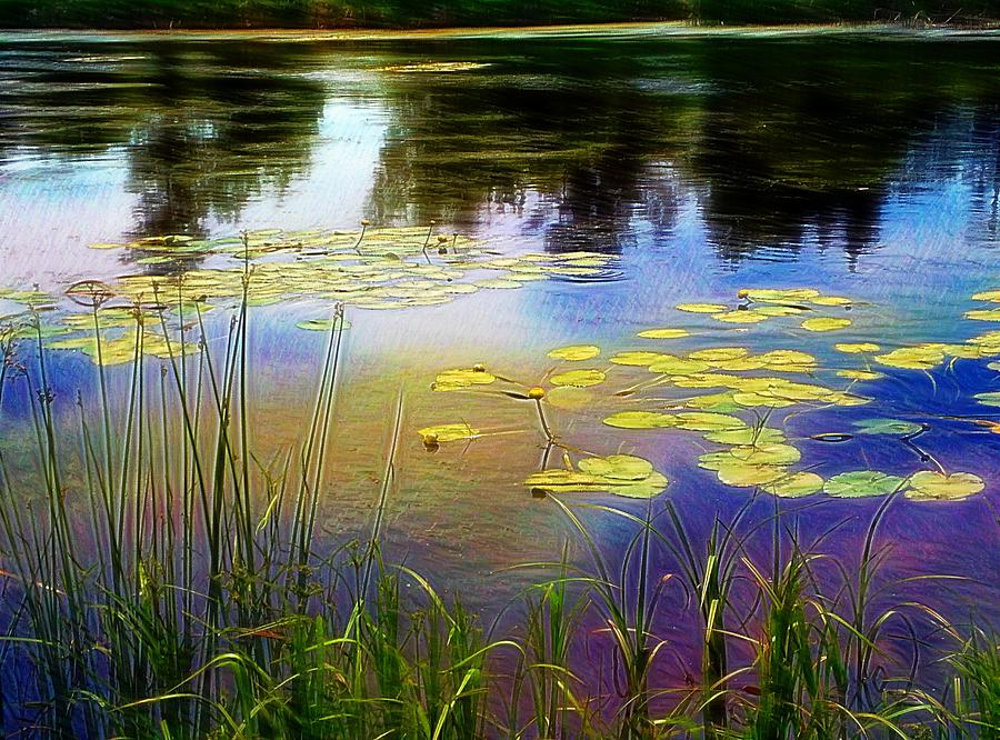 Waterlillies Digital Art - Lake Lilly Monet Style by Louise Lavallee