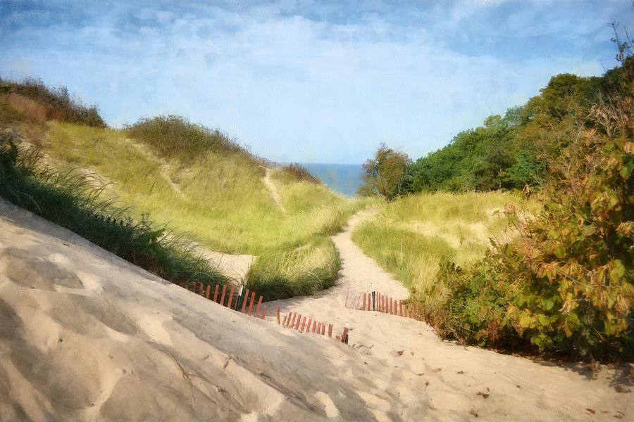 lake Michigan Coastal Dune Path by Michelle Calkins