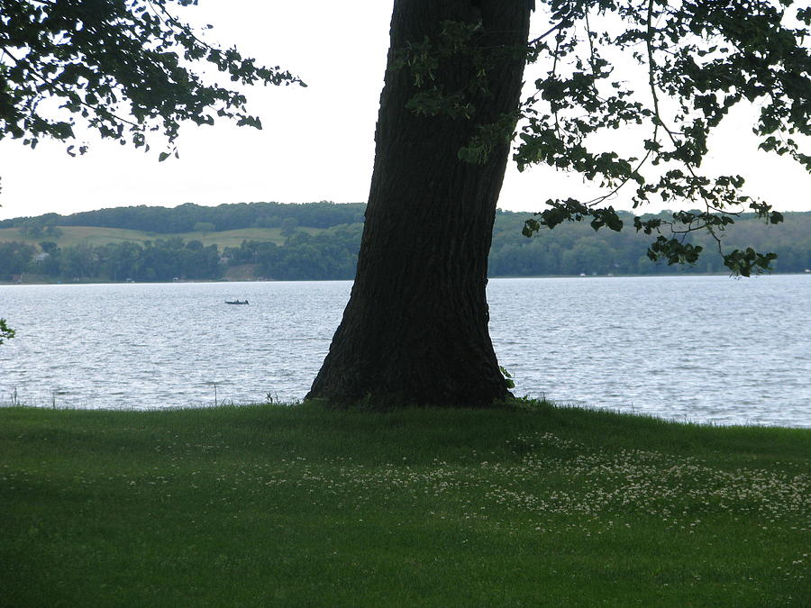 Landscape Photograph - Lake Miltona 5 by Hasani Blue