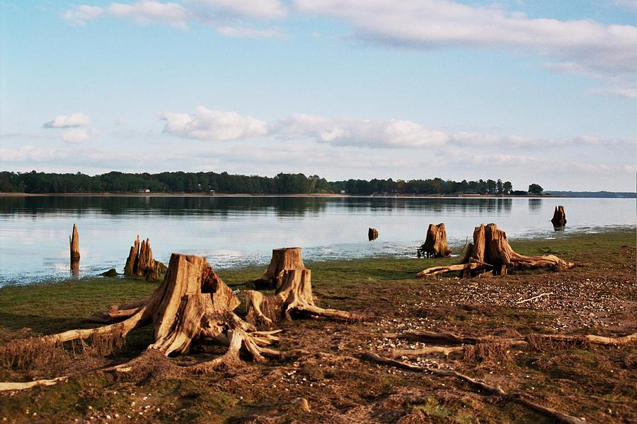 Lake murray columbia south carolina usa photograph by for Metalart polen