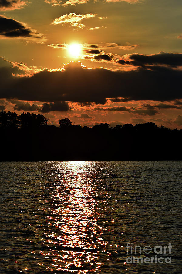 Scenic Photograph - Lake Murray Golden Hour by Skip Willits