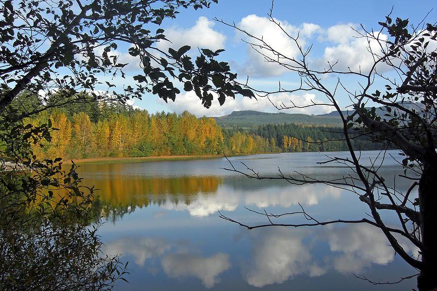 Water Photograph - Lake Padden Fall Reflection by Matthew Adair