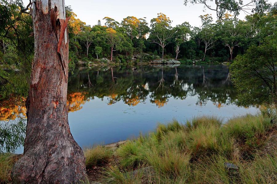 Lake Parramatta Morning Photograph