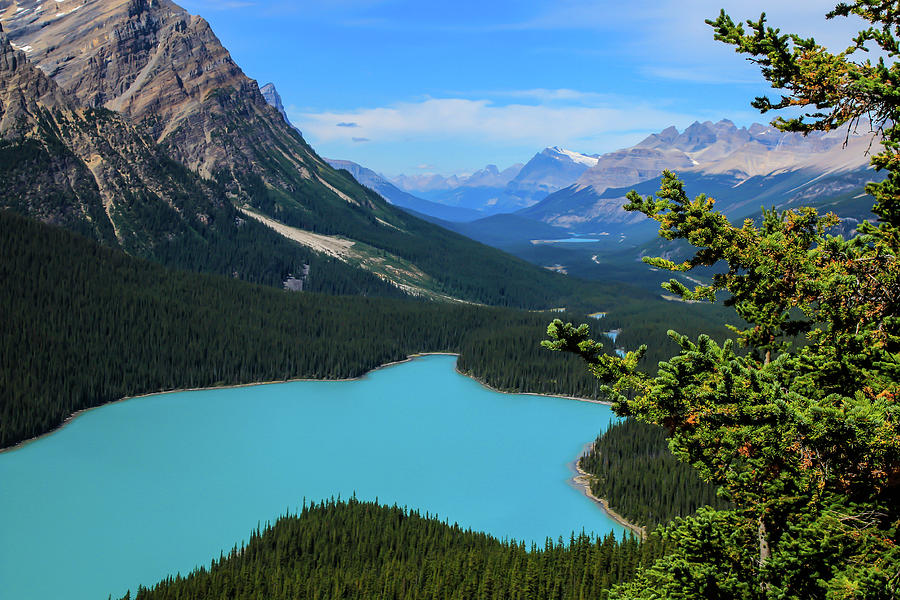 Lake Peyto Banff National Park Alberta Canada Photograph