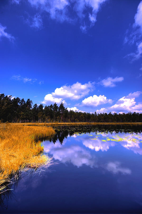 Lake Photograph - Lake Skaistes by Deividas Kavoliunas
