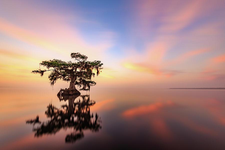 Lake Sunrise by Stefan Mazzola
