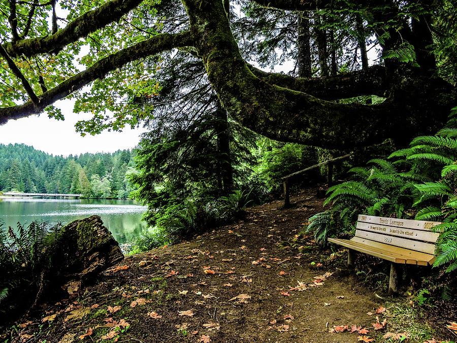 Lake Sylvia hiking view by Tony Porter Photography