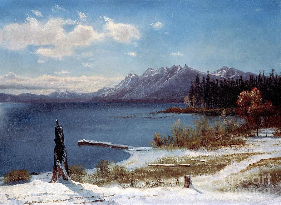 Tahoe Painting - Lake Tahoe by Albert Bierstadt