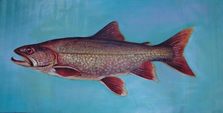 Fish Painting - Lake Trout by Charles Johnston